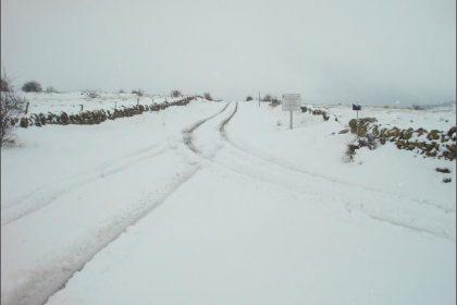 nevada en Mosqueruerla