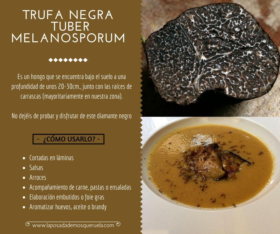 Qué es la Trufa Negra Tuber Melanosporum de Teruel