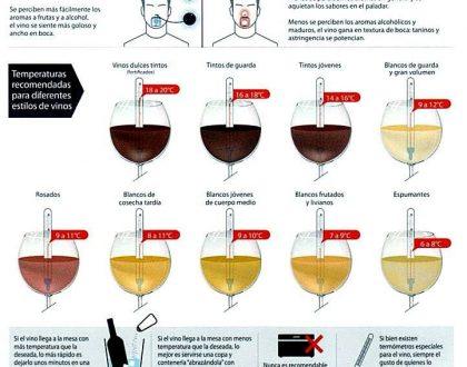 vinos y sus temperaturas